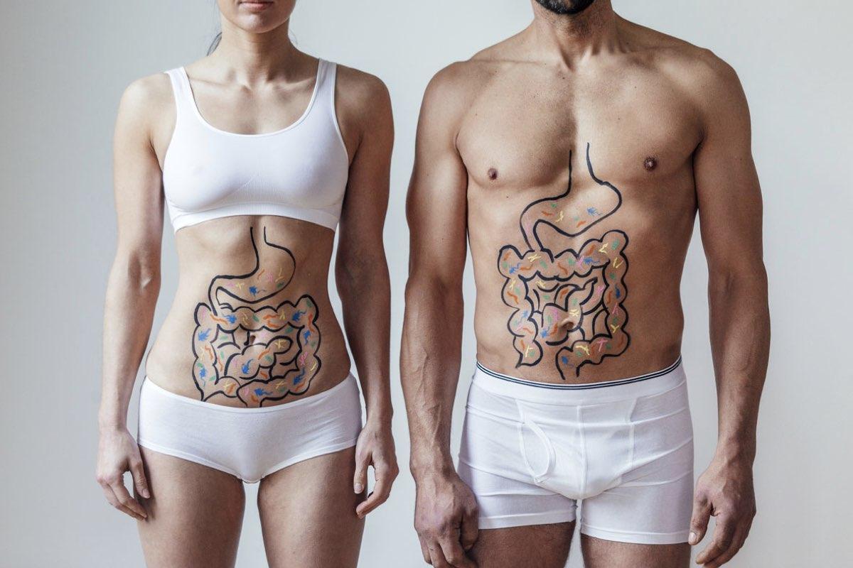 gut health - probiotics, prebiotics and postbiotics