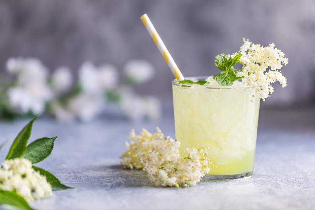 elderflower drinks