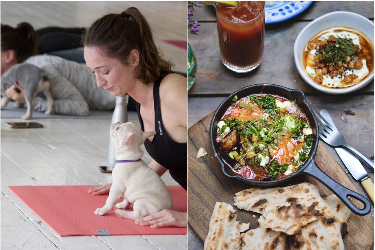 Pets Yoga at Eccleston Yards Wellness Weekenders